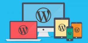wordpress-responsive-web-design-2course